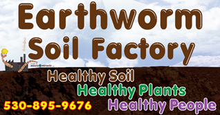 Earthworm Soil Factory